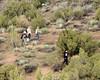 040 Searching The Bushes (saschmitz_earthlink_net) Tags: 2017 california orienteering vasquezrocks aguadulce losangelescounty laoc losangelesorienteeringclub