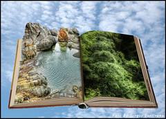 Senza titolo # 9 (celestino2011) Tags: 123rf libro rorà photomanipulation verde alberi acqua montagna aquila