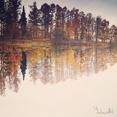 fall (YULIA♥ M) Tags: fall autumn forest water lake reflaction outdoor nature trees