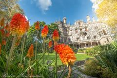 Palacio da Regaleira (Rubén Santamaría Fotografía) Tags: palacio regaleira quinta sintra portugal castillo monteiro dos milhões naturaleza jardines garden castle patrimonio mundial unesco