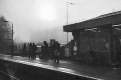 Telford (Rhisiart Hincks) Tags: gorsaf geltoki tihenthouarn tigar gare estacion station stèisean porzhhouarn rheilffordd henthouarn hynshorn trenbide iarnród burdinbide chemindefer railway rathadiarainn eisenbahn ferrocarril ferrovia geležinkelis 铁路 鉄道 caleferată telford swyddamwythig shropshire lloegr powsows england ewrop europe ròinneuropa eu ue sasana brosaoz ingalaterra angleterre inghilterra anglaterra 英国 angletèrra sasainn انجلتــرا anglie ngilandi duagwyn gwennhadu dubhagusgeal dubhagusbán zuribeltz czarnobiałe blancinegre blancetnoir blancoynegro blackandwhite 黒と白 zwartenwit mustajavalkoinen crnoibelo černáabílá schwarzundweis bw feketefehér melnsunbalts juodairbalta negrușialb siyahvebeyaz črnoinbelo черноеибелое чорнийібілий aros waiting