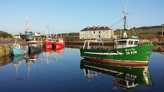 Beautiful  at Belmullet  today-Boats on Broadhaven Bay (explored today 21-1-17) (Mary Healy.Carter) Tags: ireland belmullet explored erris mary healy docks boats broadhaven bay