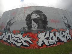 Wynnwood Art District - 1/21/2017 (Photography MC) Tags: wynnwood art district oaint spraypaint wall graffiti streetart wynnwoodwalls miami miamidade dade 305 wynnwoodartdistrict