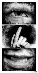 Va t' faire ... !!! (AngelsPixel) Tags: triptyque monochrome blackwhite blackandwhite noirblanc noiretblanc noir blanc black white colere rage anger fury furious fuck enculé enfoiré filsdepute sunofabitch oeil yeux bouche main eye hand mouth dent teeth levre lip langue tongue cheveu hair