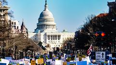 2017.02.04 No Muslim Ban 2, Washington, DC USA 00525