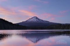 Lakeside Views (David Applebury) Tags: 2015 davidapplebury davidappleburyphotography june landscape mounthood mountain mthood nationalforest oregon reflection summer sunset trilliumlake