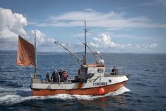 2970 angeln blau clouds coast eos6d fisch fish fishing küste meer norway norwegen ocean scandinavia sigma35mmf14dghsm skagerrak skandinavien sommer summer wasser water wolken blue nor