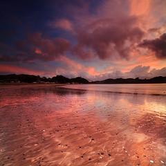 Oakura Bay Northland NZ - Vertorama (angus clyne) Tags: oakura bay northland new zealand nz sea ocean beach sand shell pattern ripple sunrise dawn vertorama