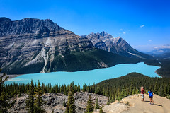 Peyto Lake From Bow Summit (Loren Mooney) Tags: blue trees wild summer sky lake canada nature canon landscape rockies aqua natural august tourists alpine banff hikers wilderness lakelouise peytolake canadianrockies 2015 bowsummit