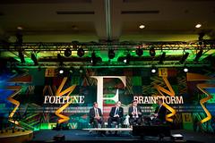 Fortune Brainstorm E 2015
