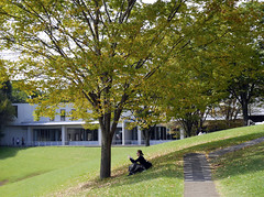 Slowly Changing Colors in Campus (ogawa san) Tags: fall campus reading autumnleaves   kanagawa  sfc fujisawa autumun shounan   keiouniversity   shonanfujisawacampus