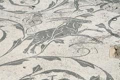 Alcuni Mitrei di Ostia_078