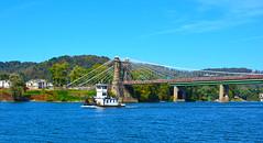 YankeeTown (brutus61534) Tags: 35mm nikon westvirginia tugboat wheeling ohioriver yankeetown nationalhistoriclandmark wheelingsuspensionbridge d5200