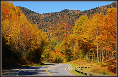 Great Smoky Mountains National Park - Explore #83 (Jerry Jaynes) Tags: road mountains color fall leaves nc fallcolor parks northcarolina greatsmokymountainsnationalpark newfoundgap tripodphotography nikkor1685vr