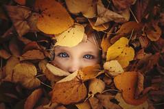 the hiding pixie (Throughtheeyesofafairy) Tags: autumn fall leaves yellow eyes pixie