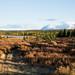 Vista de nosso acampamento