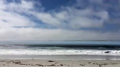Carmel beach  Elisa Coello (Elisa Coello) Tags: ocean california travel blue sea white beach water birds relax coast sand surf waves surfer horizon relaxing sound slowmo