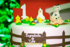 FAZENDINHA DO TULIO 2015 FINAL-40 (agencia2erres) Tags: aniversario 1 infantil festa ano fazenda fazendinha