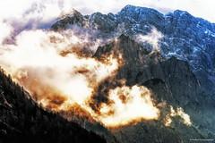 Alpine gold (Paweł Szczepański) Tags: rateče jesenice slovenia si sonyflickraward trolled er greatphotographers pinnaclephotography legacy sal70200g