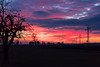 Sunset (Nikeee_) Tags: 2017 baum bäume feld januar january landschaft natur sonne sonnenuntergang sontheim strommast wolke wolken cloud clouds field landscape lila nature orange purple pylon red rot sun sunset tree trees violet violett