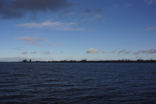 2017-01-11 Down by the San Joaquin River - Take 2 [#2]