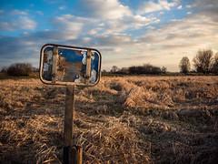 Weather Forecast (Civilis Brutus) Tags: landschap landscape forelands uiterwaarden ijssel wolken clouds sky sign bord grass gras golden pole paal field nikon p7800 sunset zonsondergang