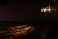 David Green (2) (Dunedin_School_of_Art) Tags: dunedinschoolofart dunedinartschool dunedin emergence light artandscience caustics bentglass