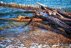 Driftwood washed against a Wooden Groyne at Whitefish Point (PhotosToArtByMike) Tags: whitefishpoint michigan whitefishpointmichigan mi lakesuperior paradisemichigan groyne groin wavebreaker post pier driftwood barricade shore upperpeninsulaofmichigan upperpeninsula up uppermichigan