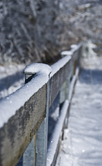 Snowy HFF [EXPLORED] (wirsindfrei) Tags: gosheim explore inexplore explored hff happyfencefriday nikond60 nikon dof snow schnee fence winter winterwonderland nature badenwürttemberg germany rottweil klippeneck bokeh