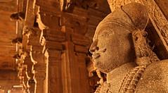 Trichy Ranganathaswamy Temple 108 (David OMalley) Tags: india indian tamil nadu subcontinent trichy sri ranganathaswamy temple srirangam thiruvarangam gopuram chola empire dynasty rajendra hindu hinduism unesco world heritage site ranganatha vishnu canon g7x mark ii canong7xmarkii
