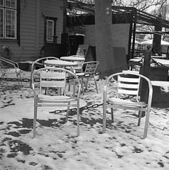 Stolar (rotabaga) Tags: sverige sweden svartvitt blackandwhite bw bwfp göteborg gothenburg lomo lomography lubitel166 120 6x6 mediumformat mellanformat diy trädgårdsföreningen