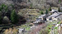 Granile - 06 (bernard.bonifassi) Tags: bb088 06 2017 mars valléedelaroya granile alpesmaritimes