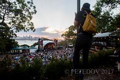 Jet (PETEDOV) Tags: livemusic musicphotography music jet rnr rockandroll tarongazoo twilighttaronga concertphotography concert gig zoo peterdovgan petedov canon canonaustralia