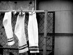 socks (sickler) Tags: socks bw dry hang laundry three tubesocks stripes mexico lomoeffect
