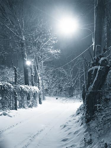 Neve notturna E