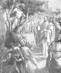 Jesus & Zacchaeus