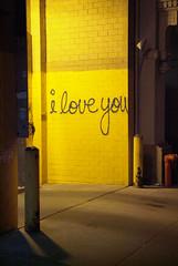 i-love-you (SteveMcN) Tags: nyc love yellow wall graffiti interestingness1 iloveyou s3pro thebestyellow