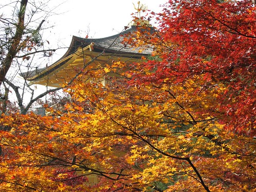 Kyoto Pagoda in Fall