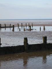 Reflecting Groynes (sbisson) Tags: shellness groyne beaches
