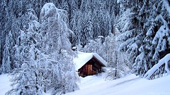 Chalet  la Montagne (_Marcel_) Tags: schnee winter house snow ski france mountains alps forest montagne interestingness frankreich hiver interestingness1 haus berge chalet topf topv alpen savoie wald topi tannen laclusaz beauregard travelog top20fav schneedach frhwofavs