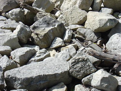 Rocks. Some…