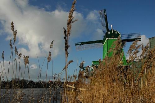 Mulino ad Amsterdam