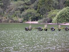1498-lake rotoiti (shimmertje) Tags: new zealand rotorua 204