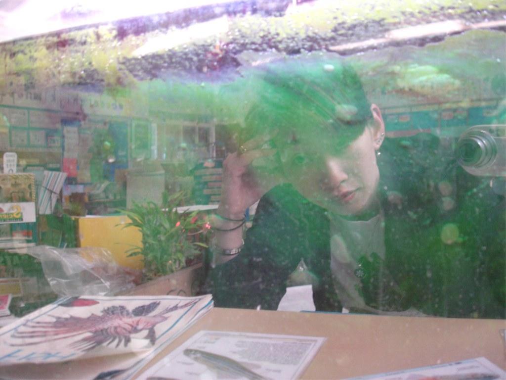 My classroom fish tank
