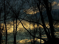 Sunset In Lexington VII (mightyquinninwky) Tags: fontaineroad lexingtonky fayettecountyky kentucky clouds sunset trees december winter sky