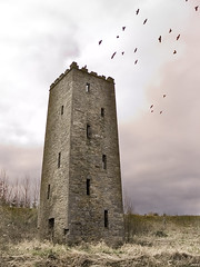 Abode Of Crow (SteveFE) Tags: county ireland tower castle skyscape landscape interestingness saveme4 clare saveme5 saveme6 saveme savedbythedeletemegroup saveme2 saveme3 saveme7 ruin things saveme10 saveme8 saveme9 forsakenthings topf100 derelict countyclare saveme11 scariff cmpool
