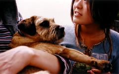 chow & dog (lomokev) Tags: summer dog brighton chow agfa ultra t2 contaxt bgen2113 deletetag