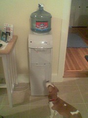 poor water cooler design