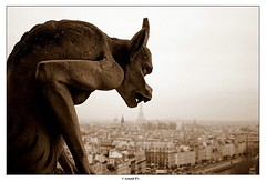 Hungry (Arnold Pouteau's) Tags: paris sepia quality notredame gargoyle december05
