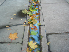spilled milk (johanna) Tags: london leaves vintage milk pavement flowermarket columbiaroad anoldchestnutfromfotolog